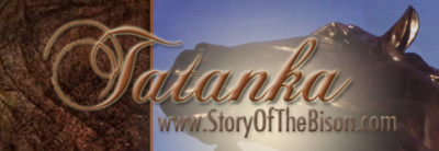 Tatanka | Story of the Bison